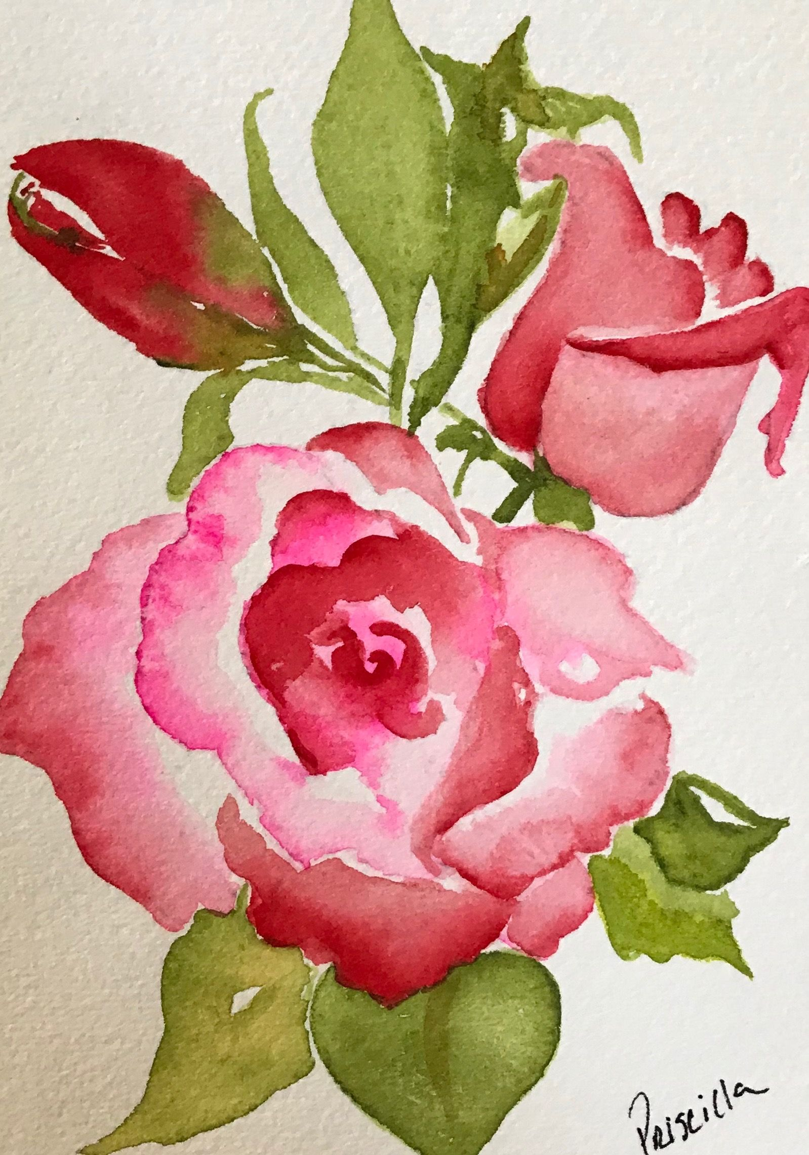 Acuarela Watercolor Flowers Paintings Floral Watercolor Flower