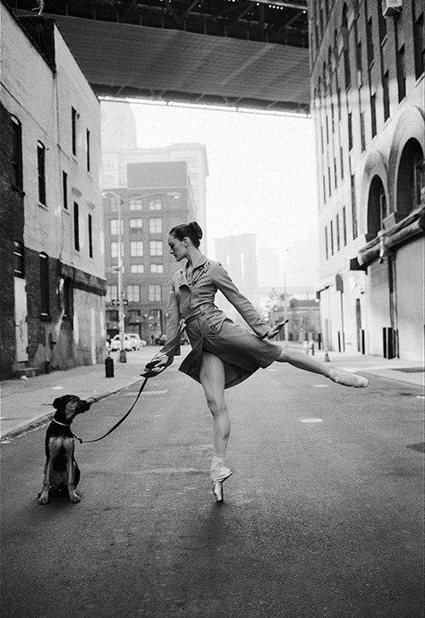 doggie x ballet x city