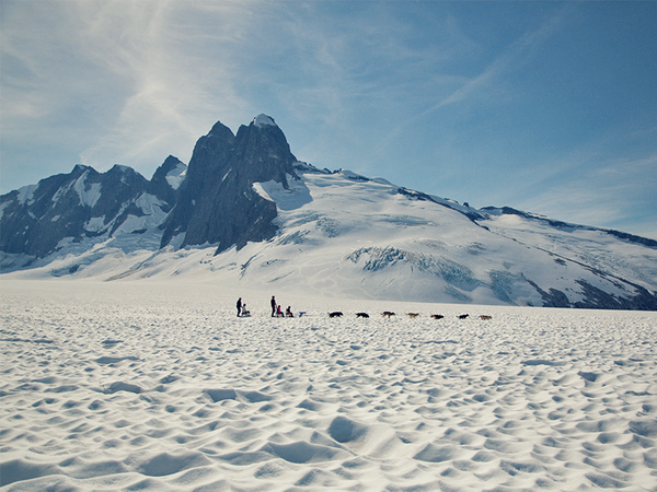 Go dogsledding in Alaska.