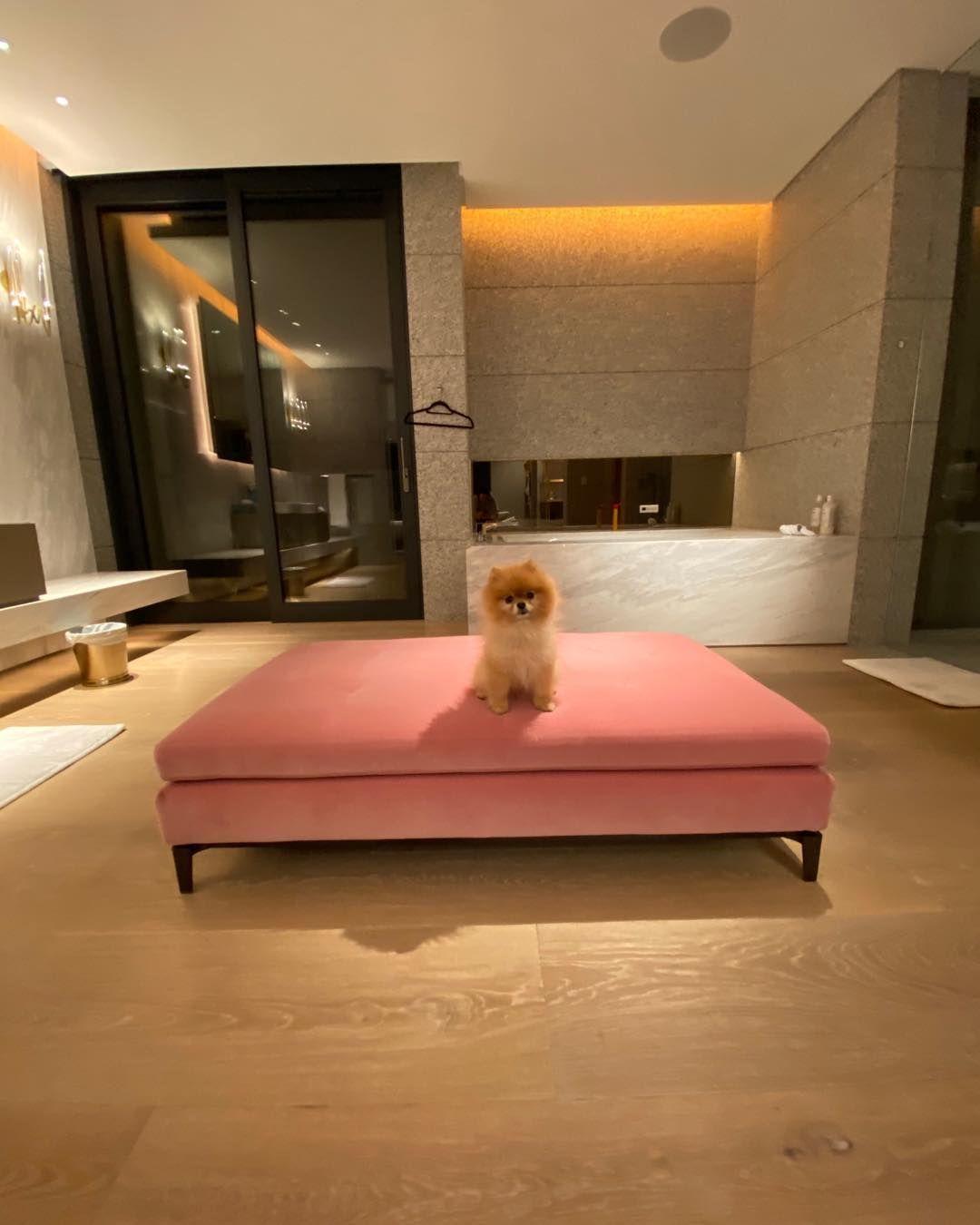 Vera Wang On Instagram Love This Little Girl Interior Home Decor Furniture