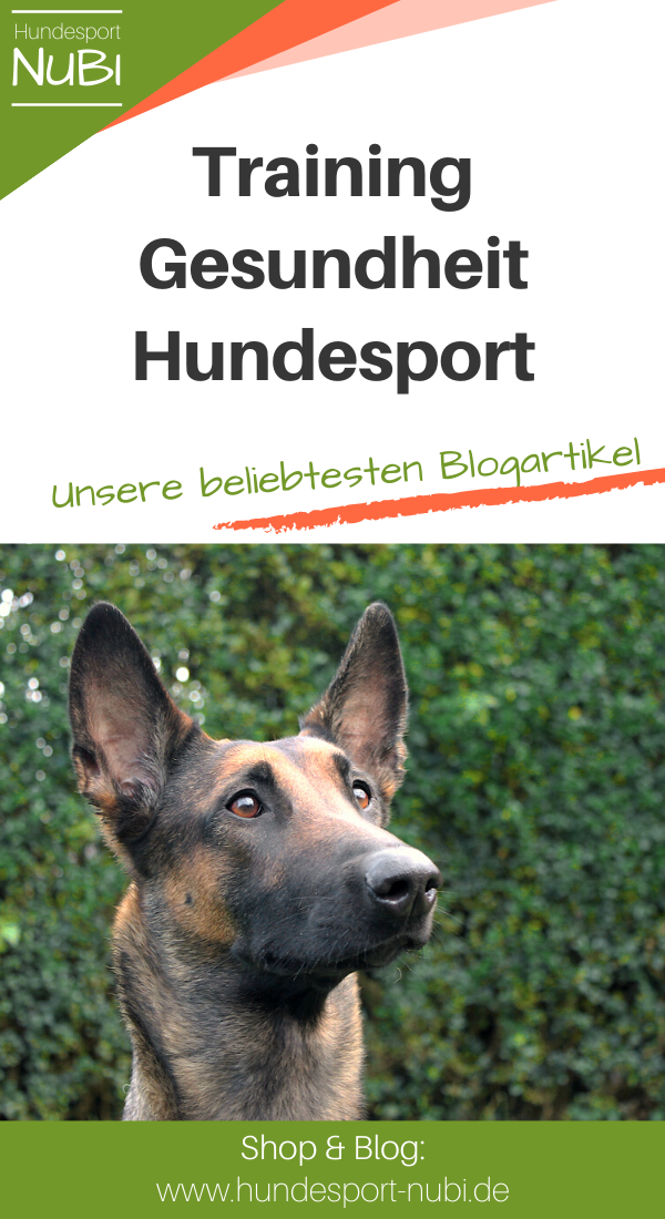 Top Artikel Uber Hundesport Und Hundetraining Hundesport Nubi Blog Hundetraining Hundchen Training Hundesport