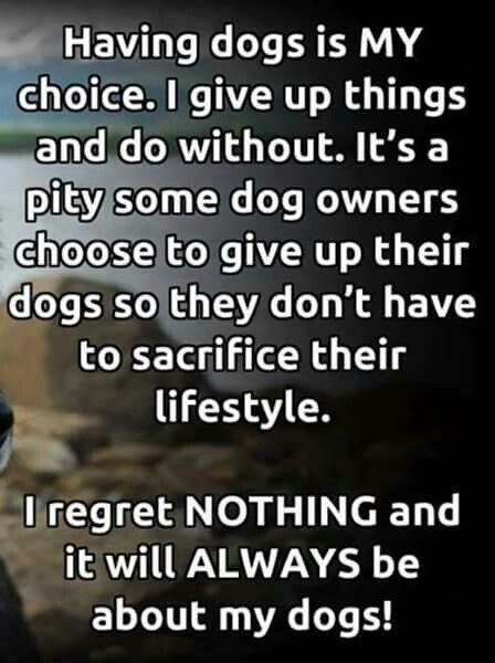 HELL YEAH I Love My Babies And They Will Never Go Without Or Ever Gorgeous I Love My Dog Quotes
