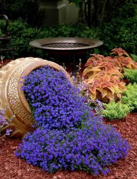 Garden Guru Container Gardening Shows Artistic Side With Images