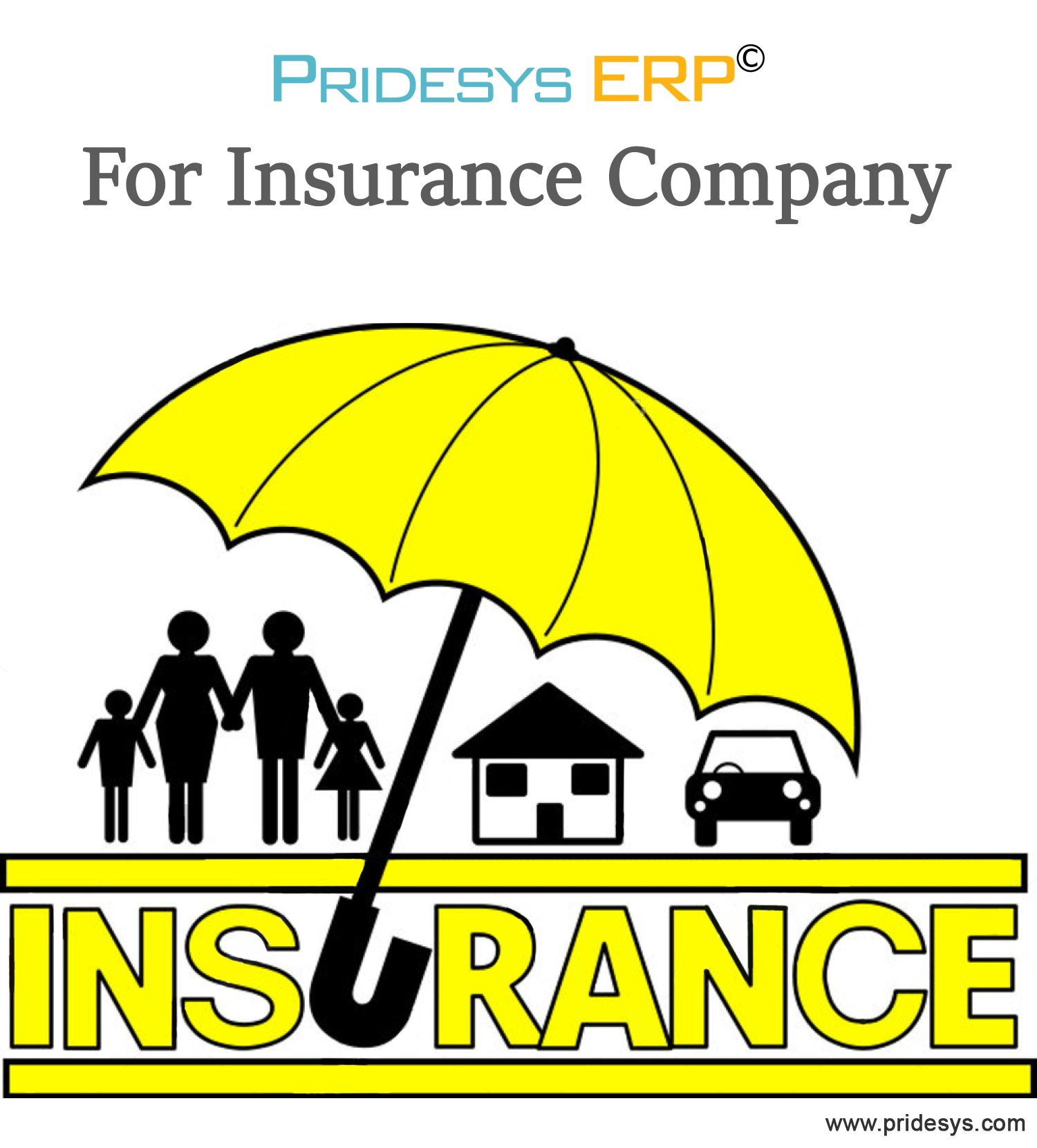 Insurance Company Is Representing A Complicated Form Of Business