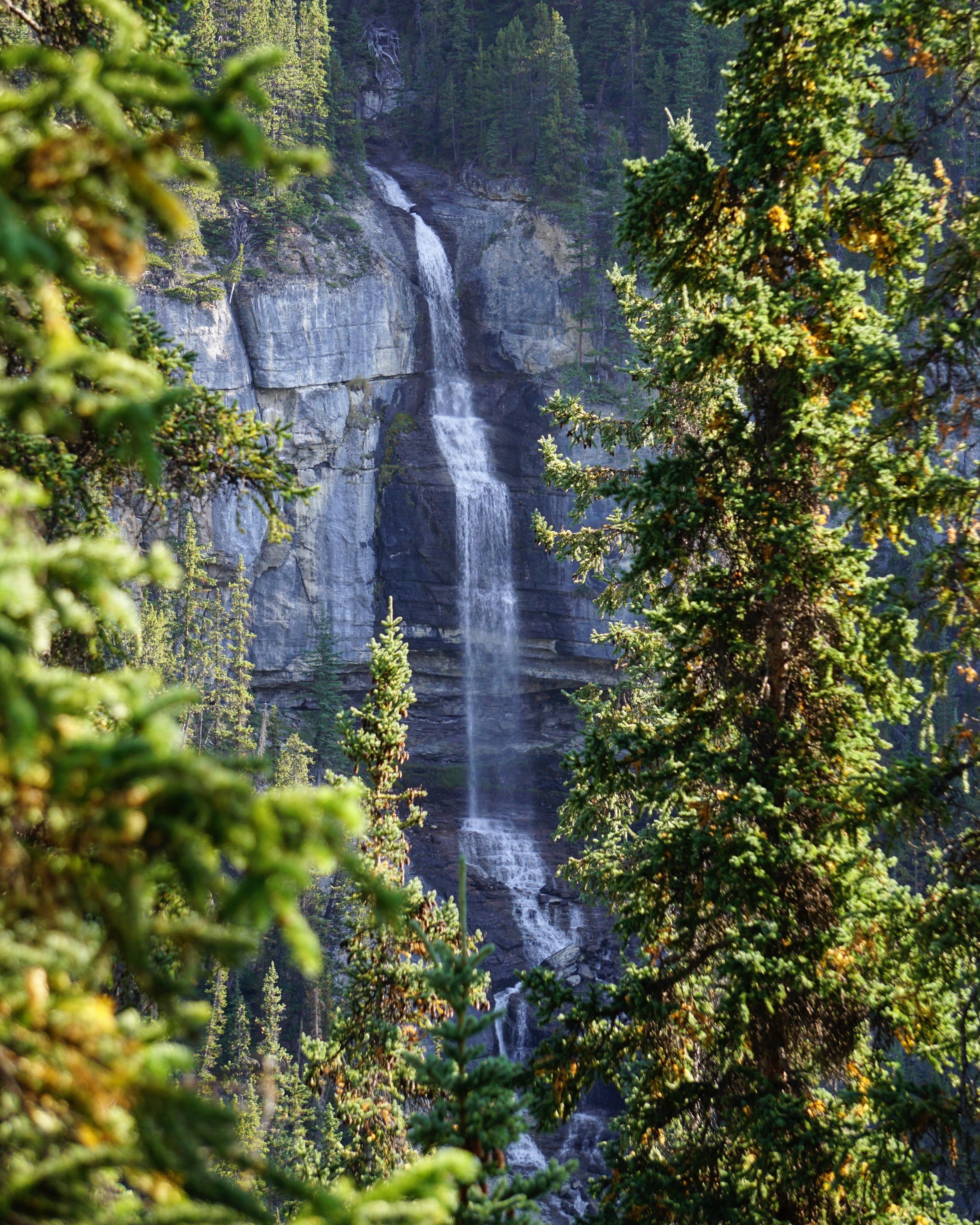 Natural frame for Bridal Veil Falls (3276x4096) [OC] | Outdoor ...
