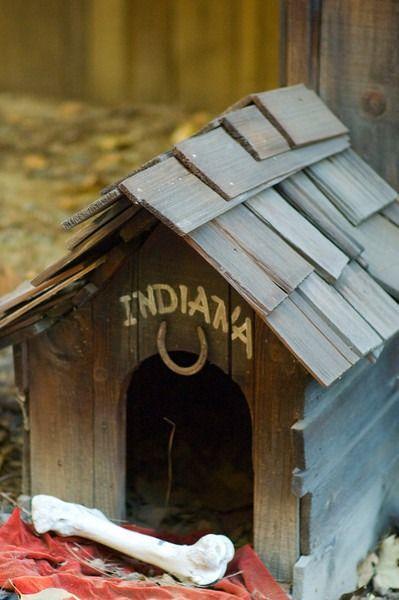 Indiana Jones Dog House Disneyland
