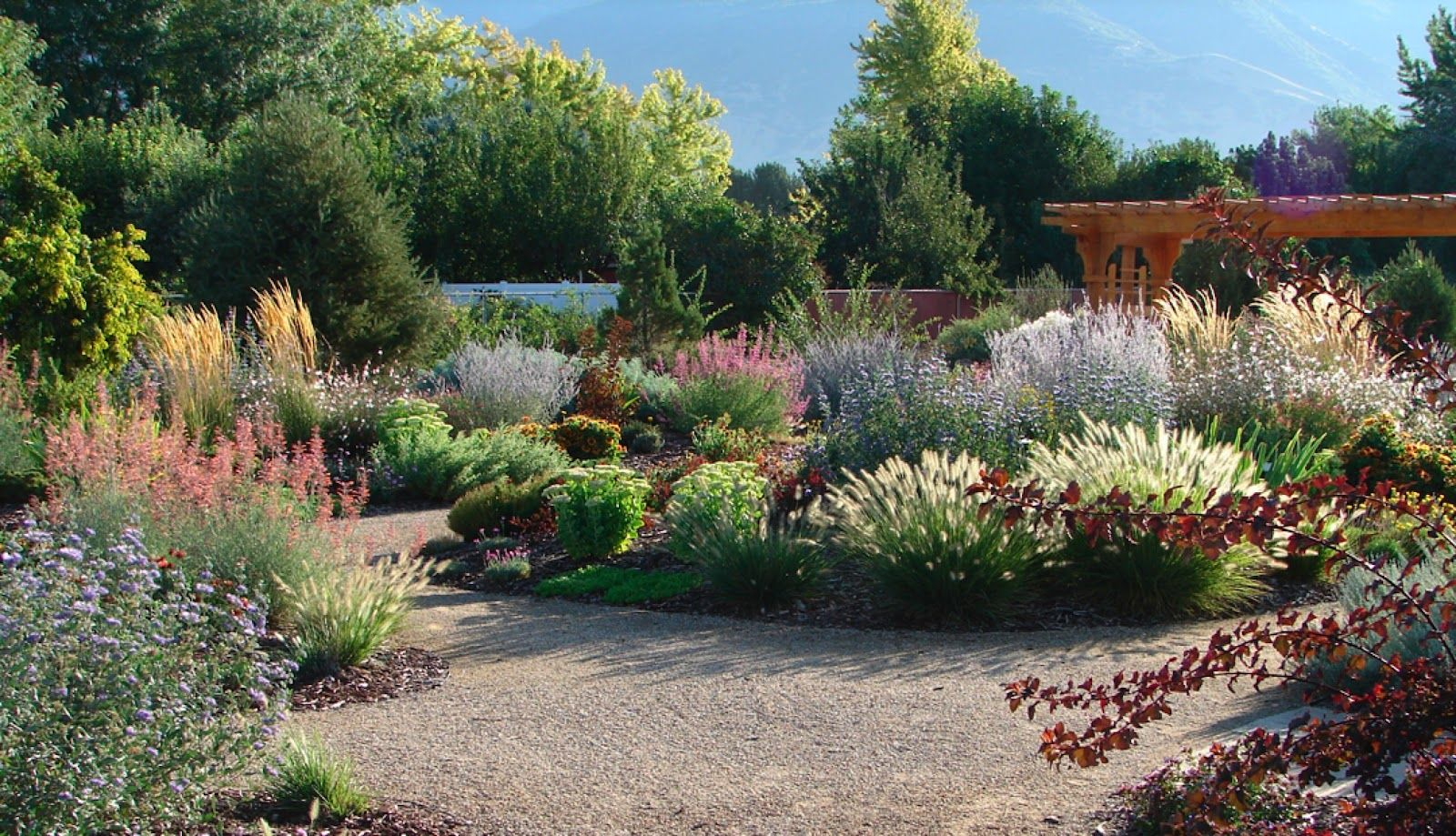xeriscaping in utah | Oh yeah. Maybe a little of this: