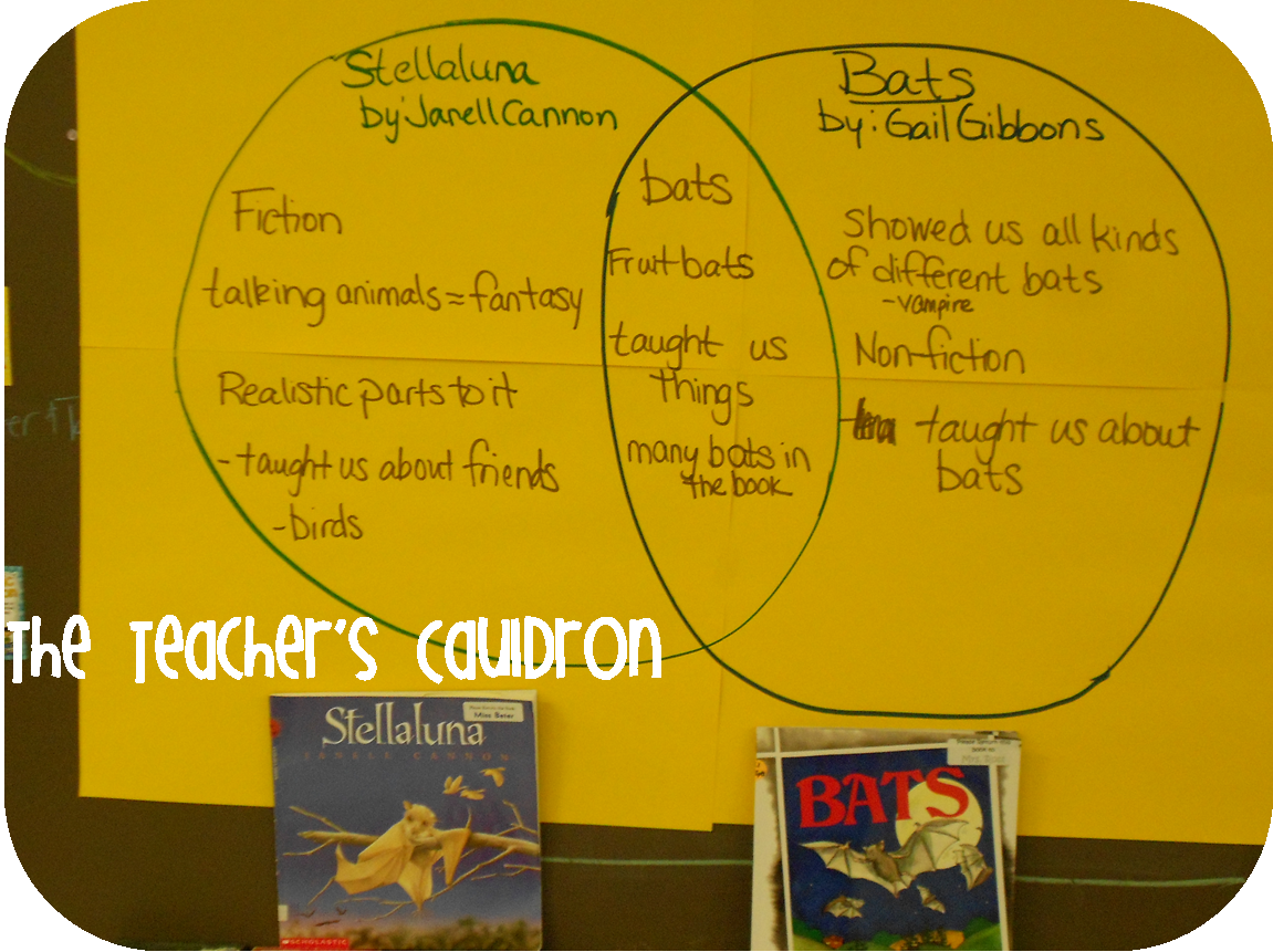 Comparing Fiction And Nonfiction Books Using Stellaluna