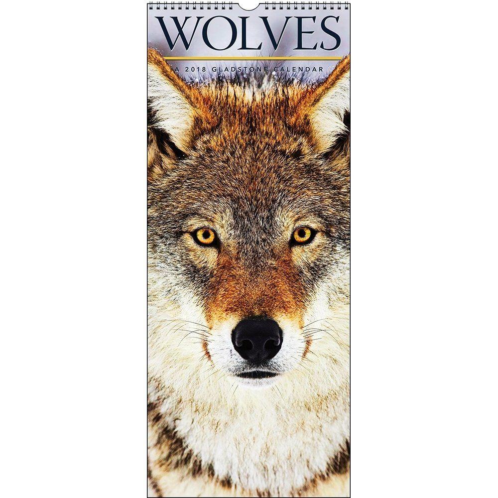 Ally amazon gladstone wolves calendar wishlist