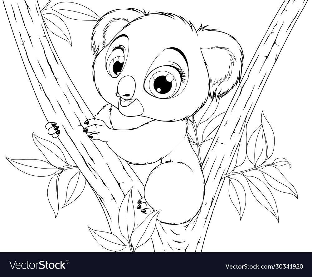 41+ Detailed koala coloring pages information