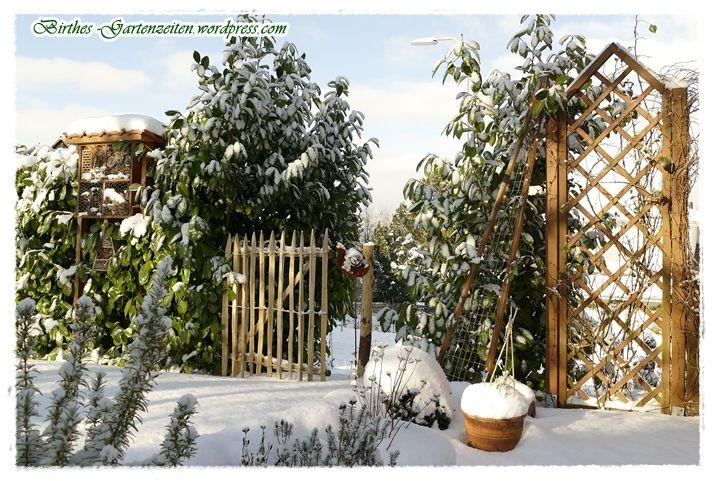 Garten Im Schnee Endlich Winter