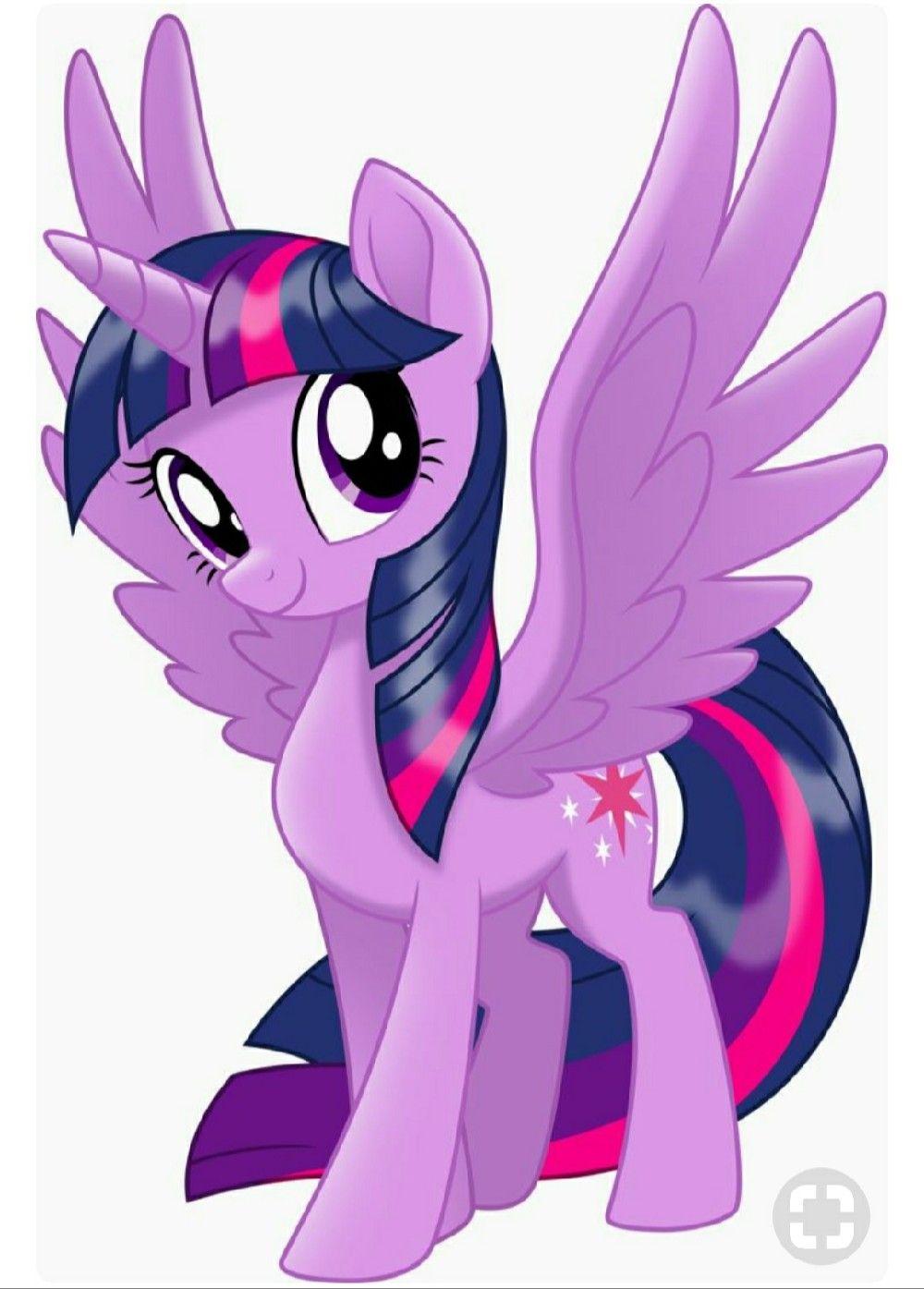 - Princess Twilight Sparkle My Little Pony Twilight, My Little