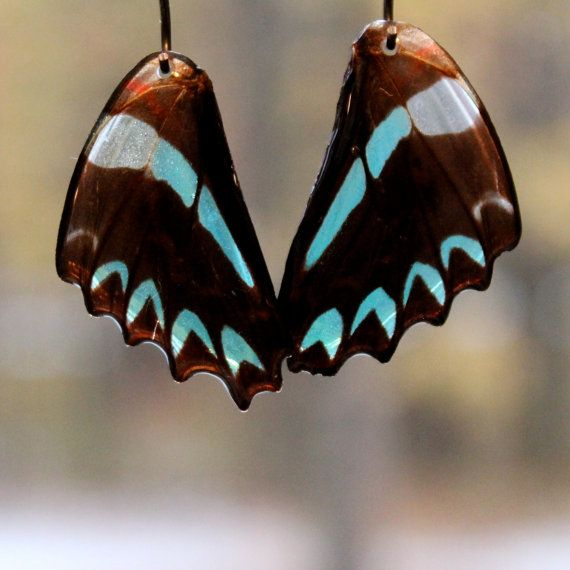 Hey, I found this really awesome Etsy listing at https://www.etsy.com/listing/168206595/real-butterfly-wing-bead-single-or-pair