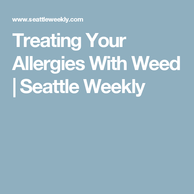 Treating Your Allergies With Weed Seattle Weekly