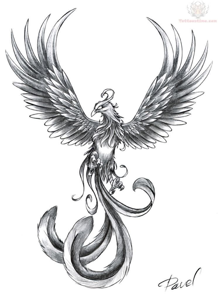 32486657a Pin Small Bird Tattoos Chinese Phoenix on Pinterest | TATTOOS ...