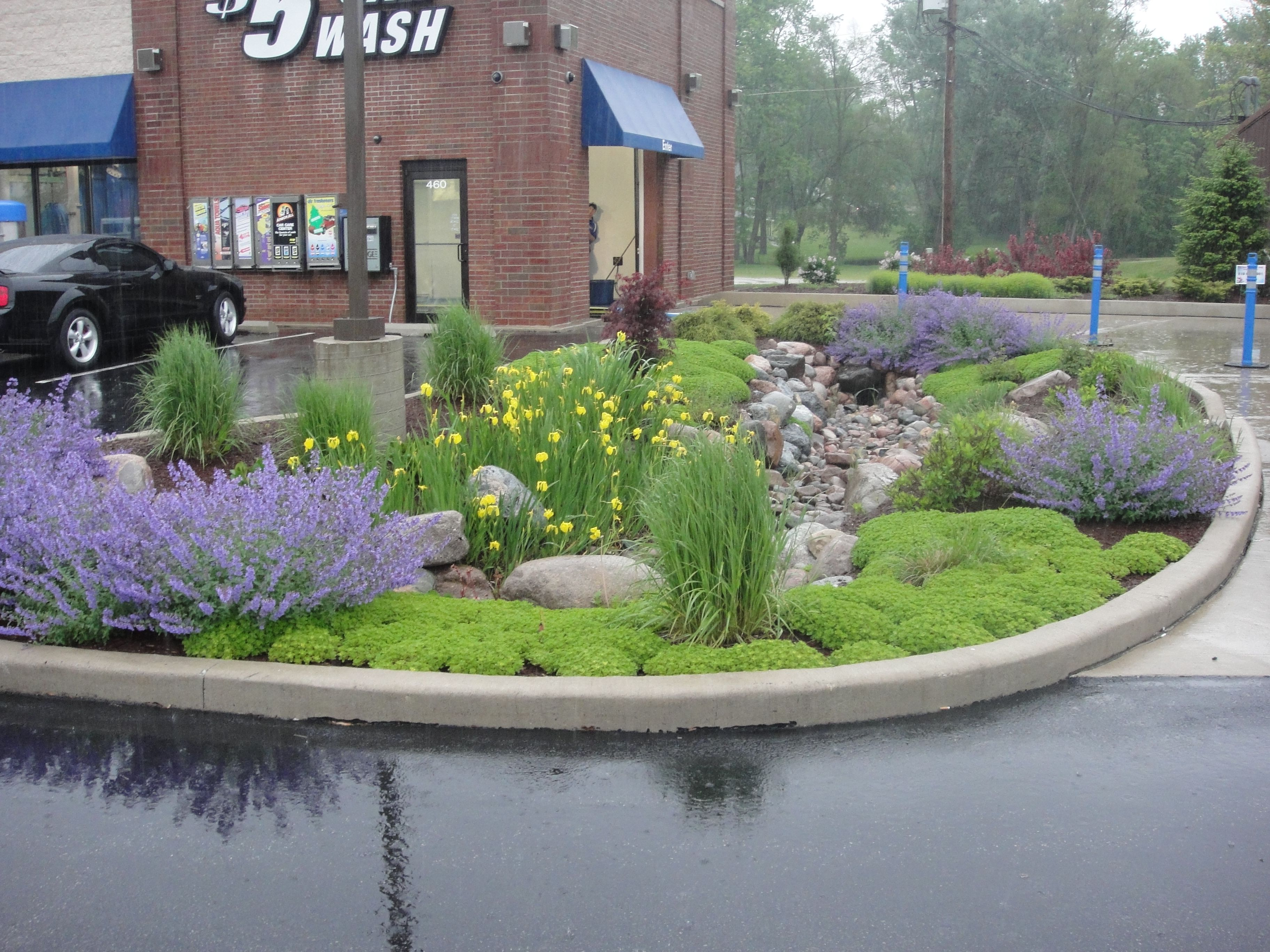 Water garden / retention pond for business property in ...