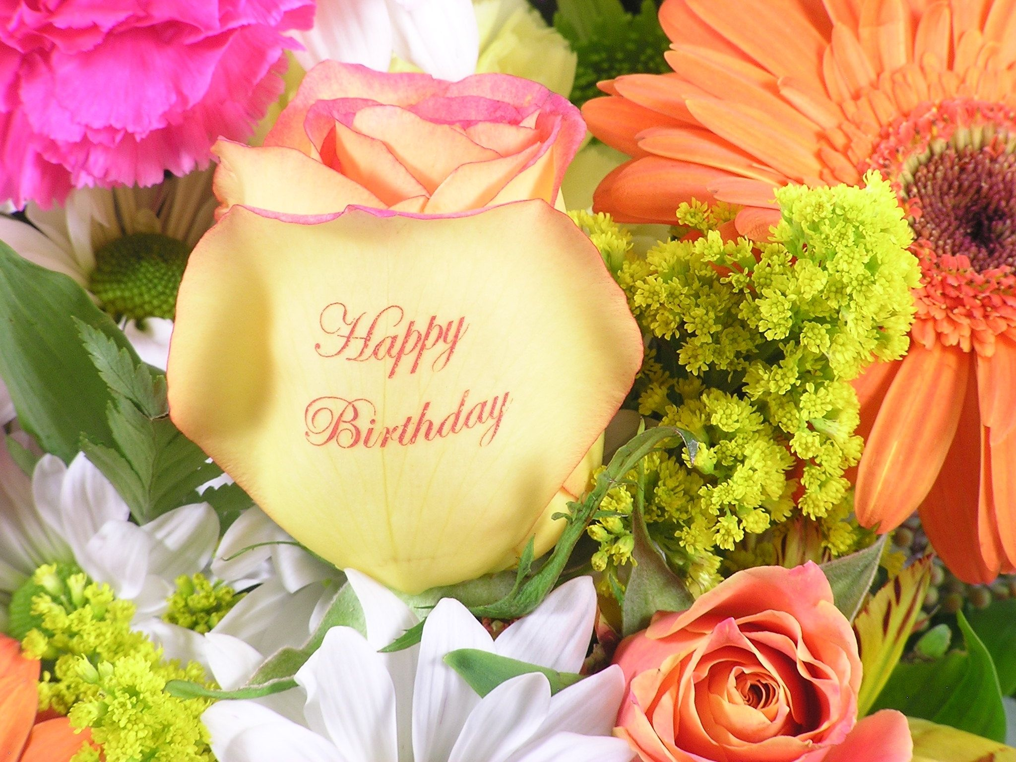 Send a special happy birthday greeting with our speaking roses a