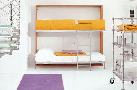 Lollipop Murphy Bunk Beds Bunk Bed Plans Cool Bunk Beds