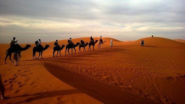For Selecting Best Desert Safari In Dubai To Make Your Trip An Remarkable The city of Dubai is strikingly excellent just as well as area that has various things to offer...