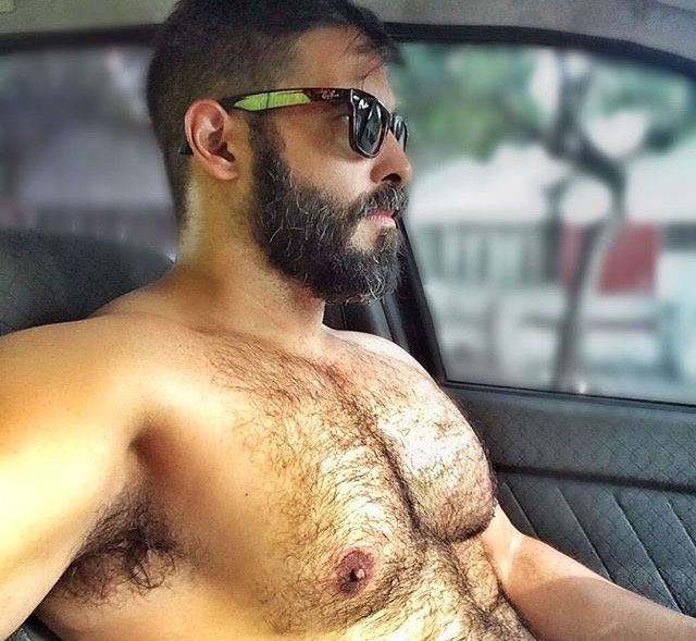 hairy driver. | bears and daddies | pinterest | mature men, hairy