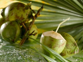 Thrive Naturals Garcinia Cambogia 75 Hca Ultramax