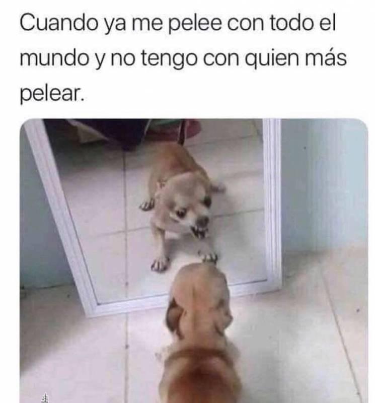 Memesespanol Chistes Humor Memes Risas Videos Dbz Memesespana Espana Ellanoteama Rock Memes Love Vi Memes Divertidos Meme Gracioso Meme Divertido