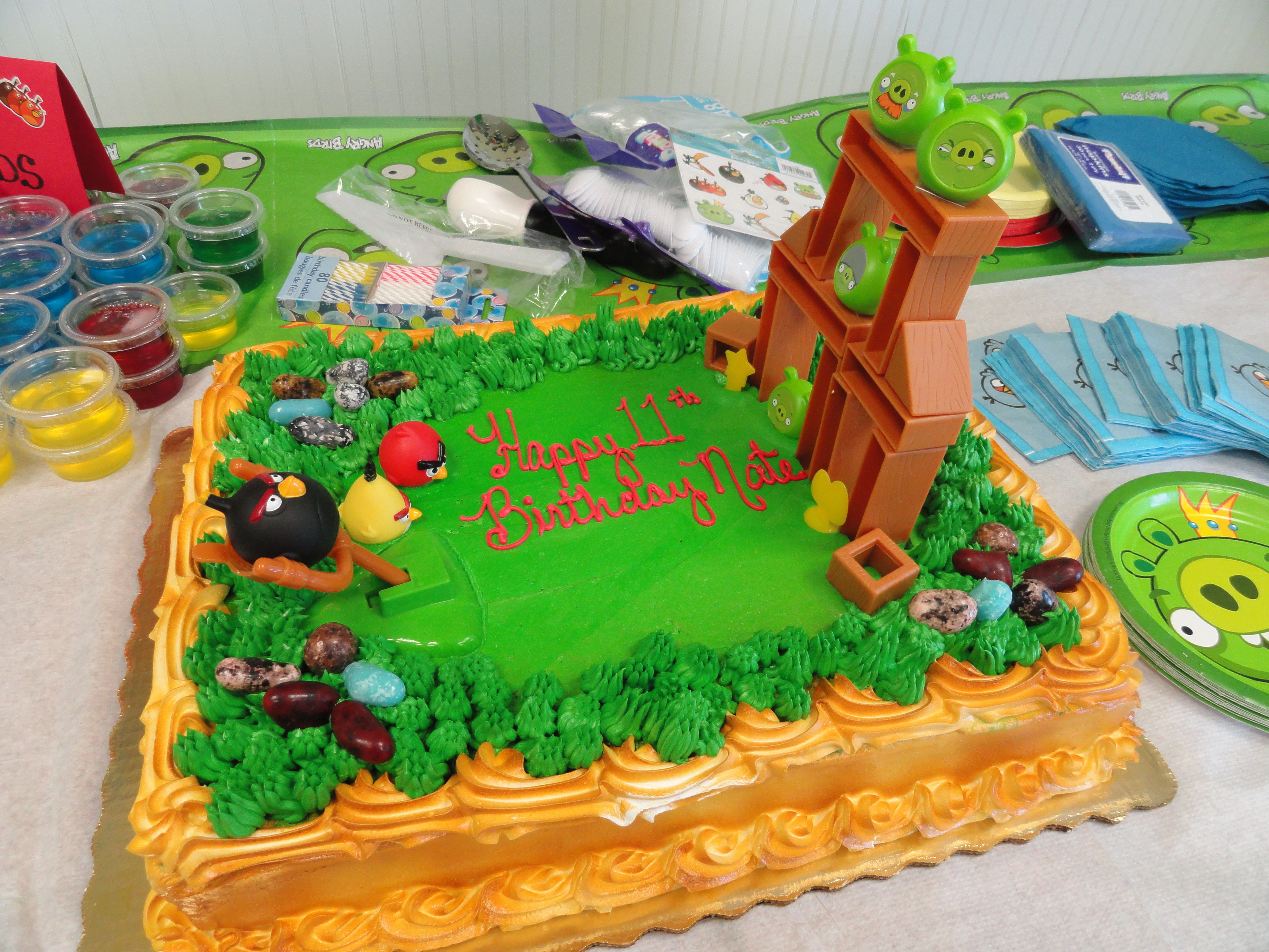 I Ordered The Cake From Publix 1 2 Sheet Asked Them To Make It Grassy They Added Candy Rocks Bought Angry Birds Game Target