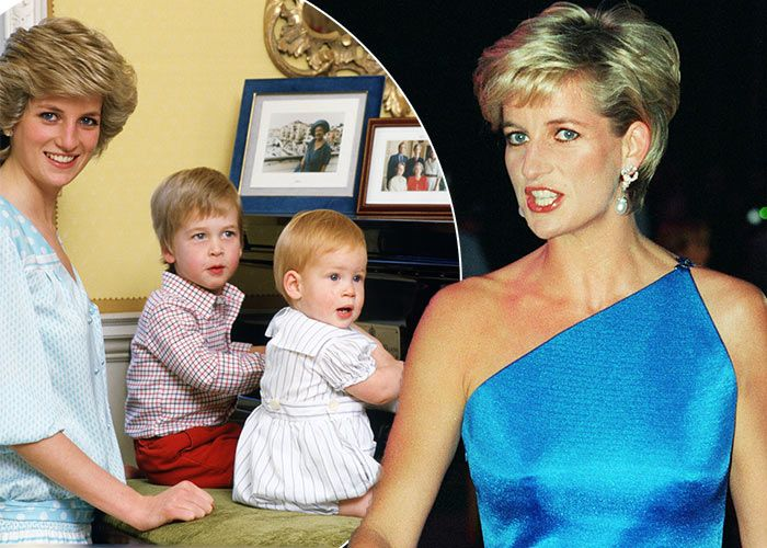 The former bodyguard of Princess Diana has revealed the moment he first met her…