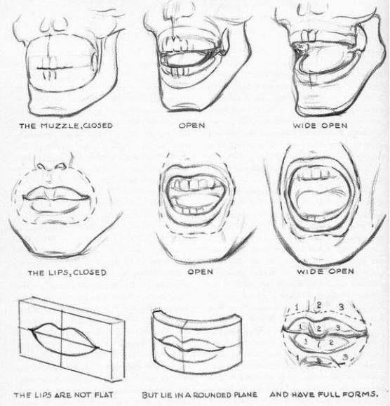 Rostro Humano Como Dibujar Un Hombre Facil Paso A Paso La Guia Definitiva Para Aprender A Dibujar Rostros Con Imagenes