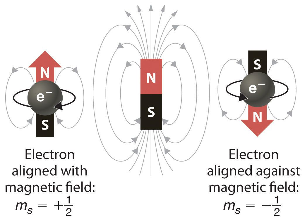 How can two electrons, one with an up spin and one with a