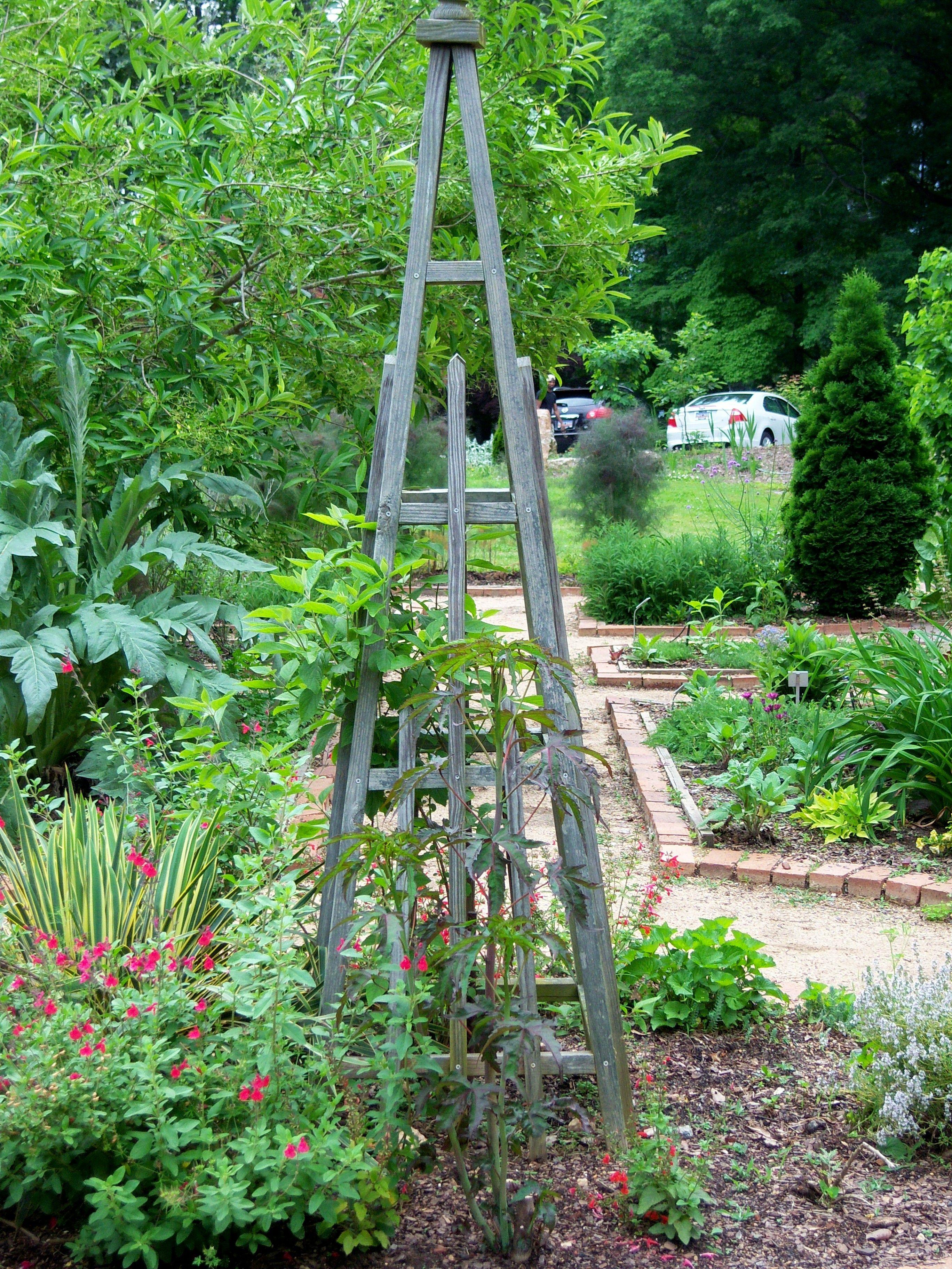 SC Botanical Gardens, Clemson, SC
