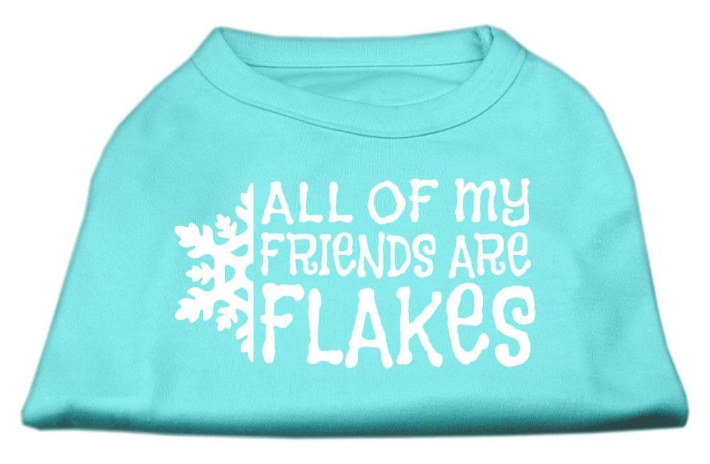 All my friends are Flakes Screen Print Shirt Aqua L (14)
