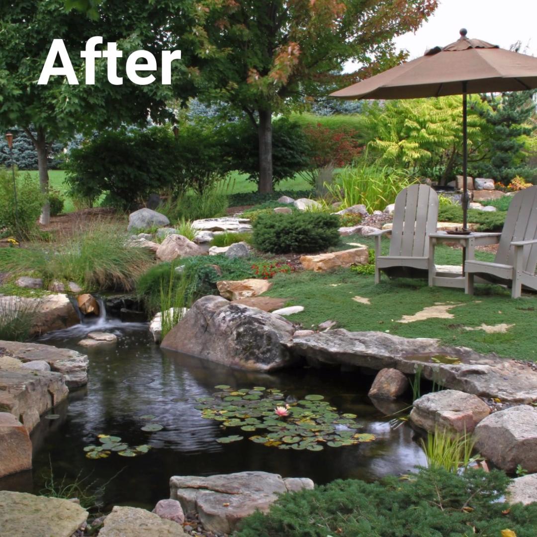 Photo of Backyard Transformations!