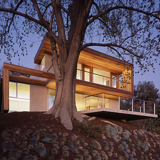 tree house | Standard | Archinect