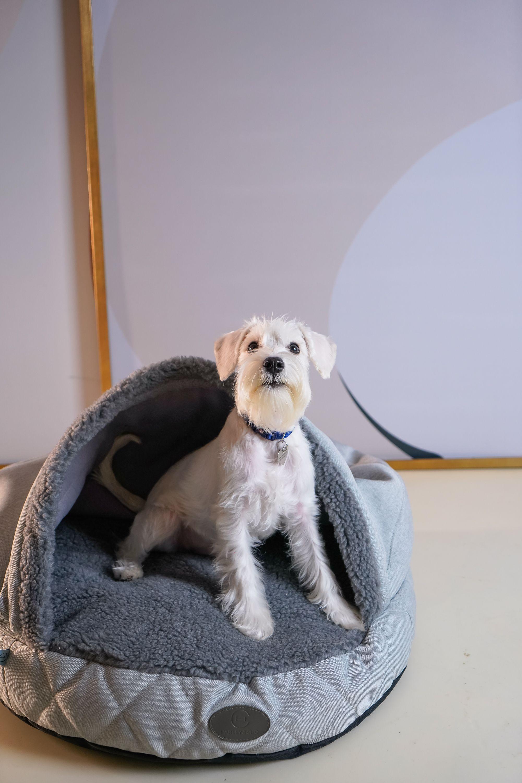 Luxury Plush Cave Bed For Dog Extremely Soft Italian Etsy Dog Bed Plush Dogs