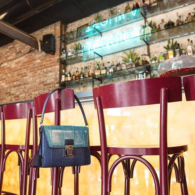Dinner with Grace Bag in elaphe skin. Photo by Tank Photo Factory