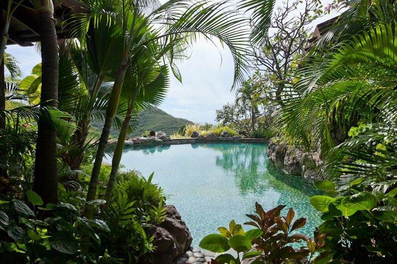 Gorgeous tropical pool  - property on Mustique island