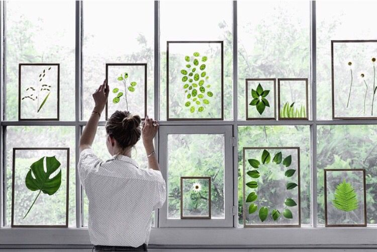 Je favoriete blaadjes in een lijstje prachtige raamdecoratie