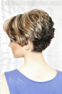 Short Tapered Neckline Haircuts For Women Back View Long