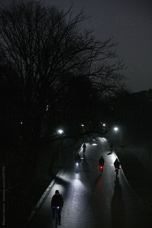 Cyclists Silhouettes Moving At Night In A City Park By Miquel Llonch