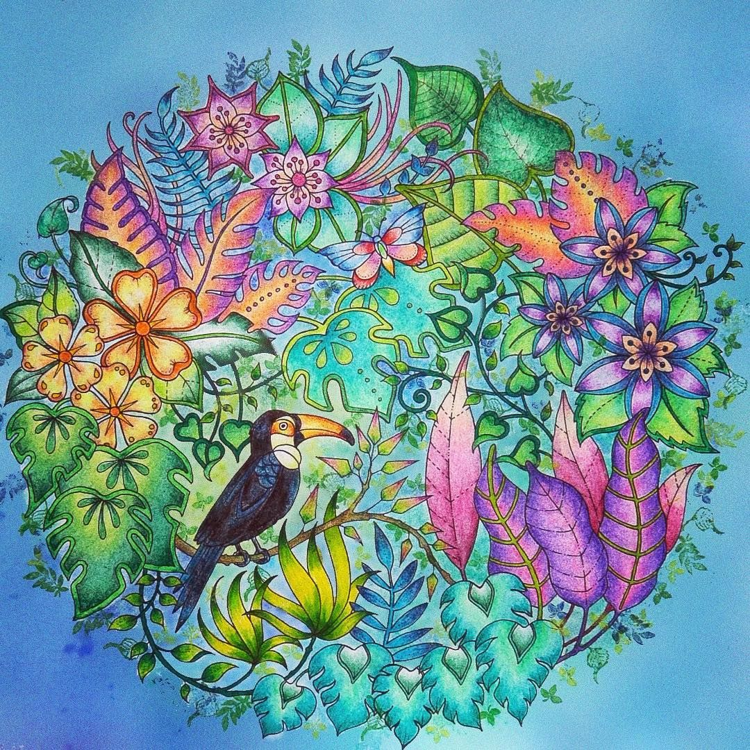 I'm really proud of this one! Johanna Basford magical jungle ...