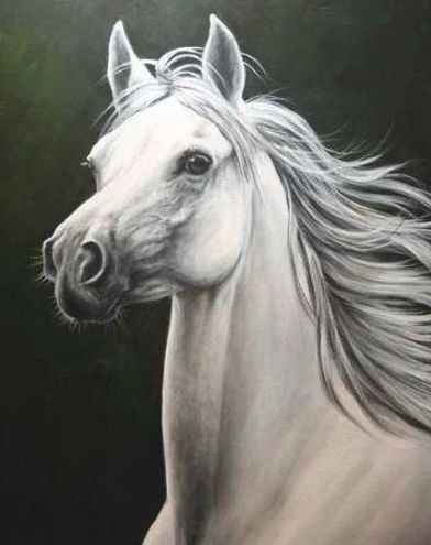 Learn how to paint this beautiful white Arabian Stallion by artist Glenice Moore…