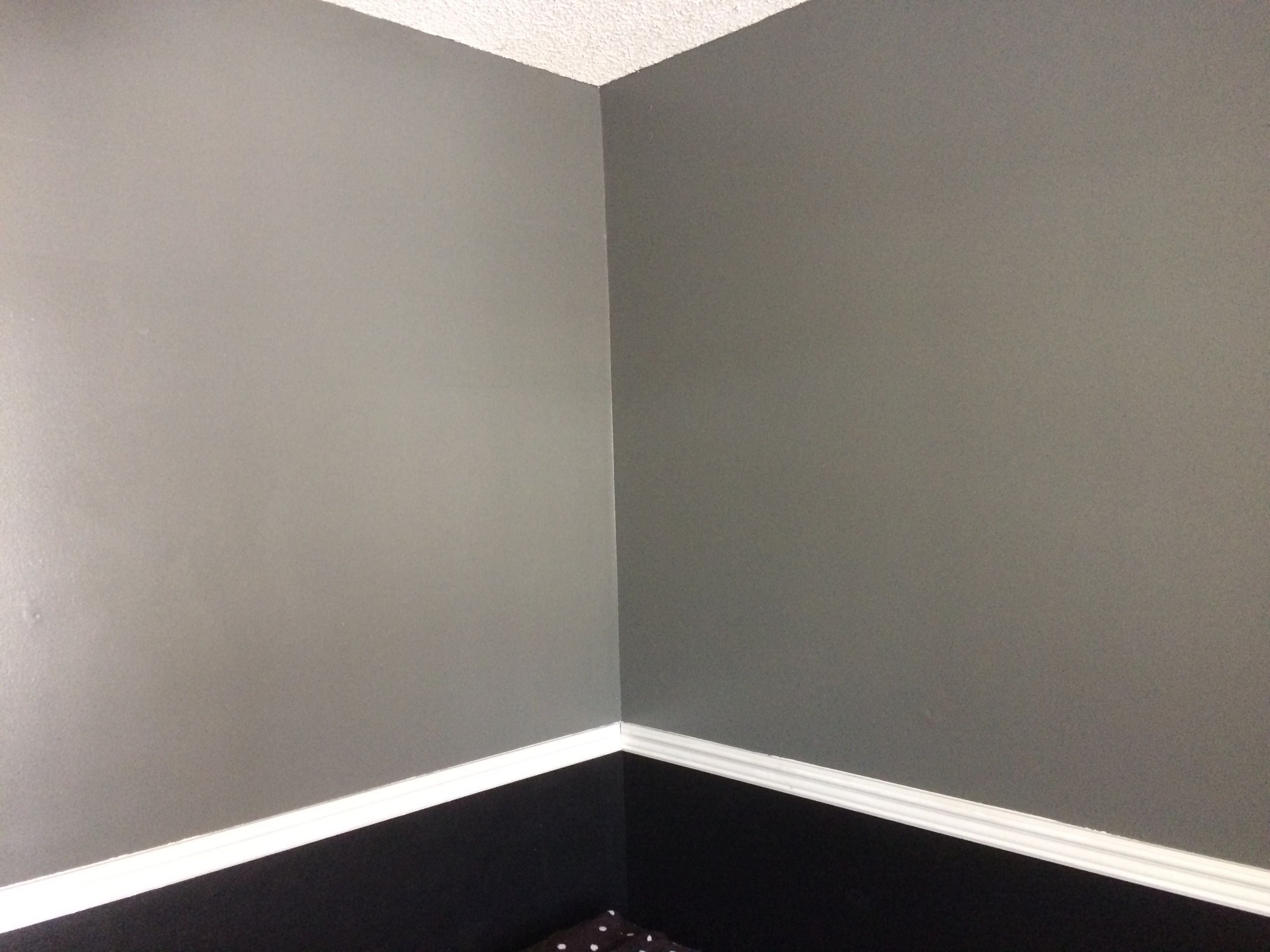 Behr Ancestral Gray paint colors