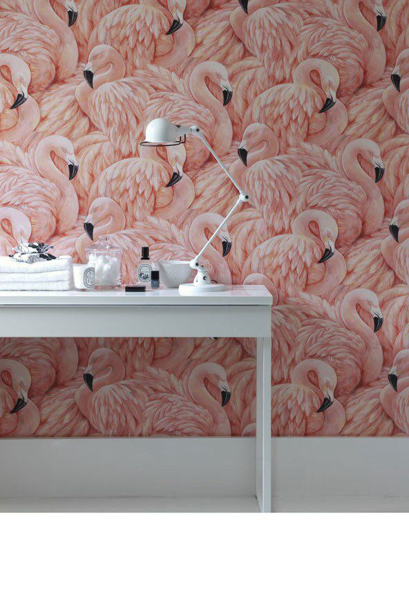 Flamingos By Albany Wallpaper Wallpapers Direct Colour