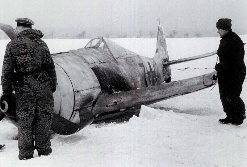 6th SS Gebirgsjager Nord July 1943