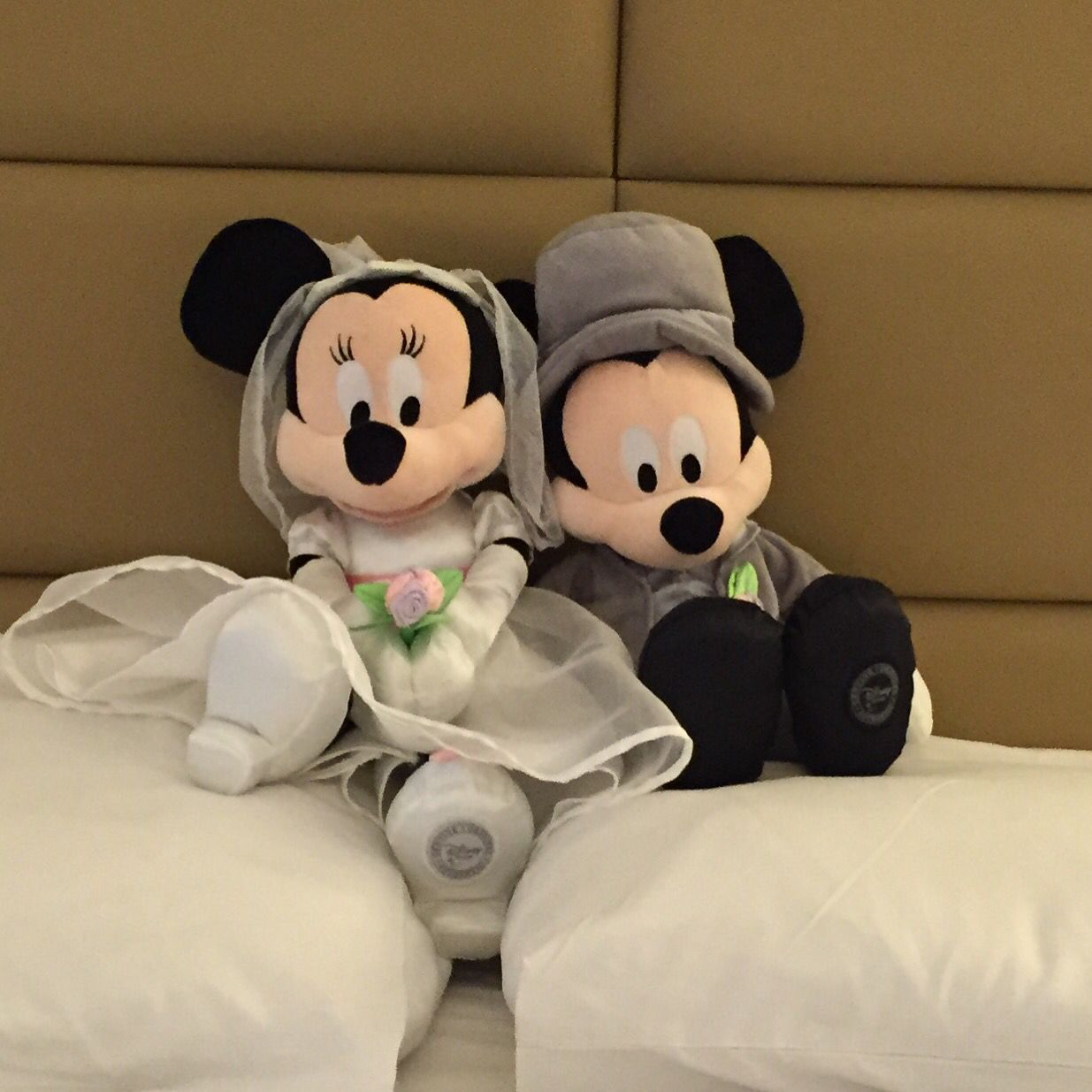 Our mickey and Minnie