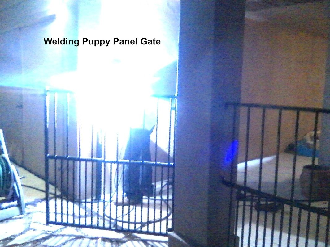 Puppy Panels Dog Enclosures Fortress Fence Company