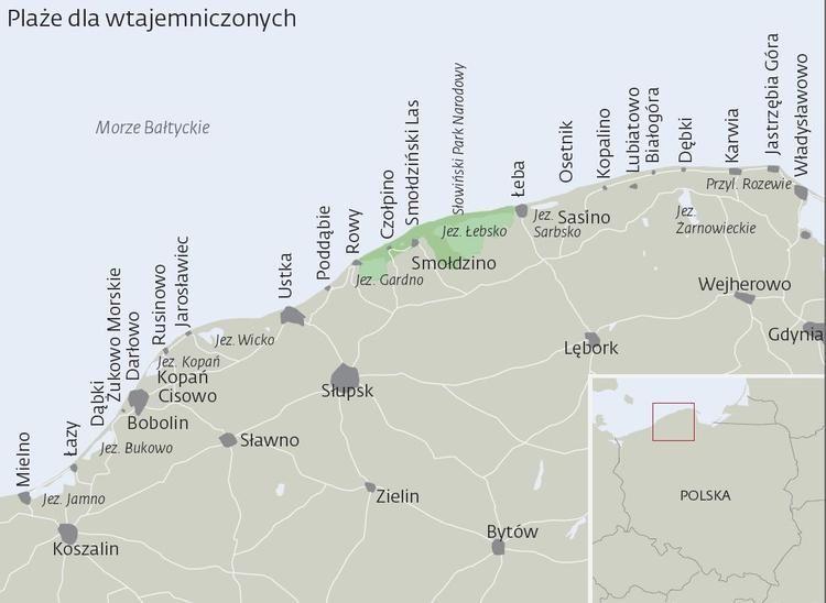 Dabki Mapa Szukaj W Google Mapa Morza Lasy