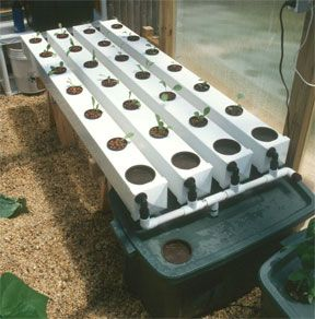 Build your own diy aeroponic system step by step instructions with pictures to help you build your own low cost, high performing aeroponic system