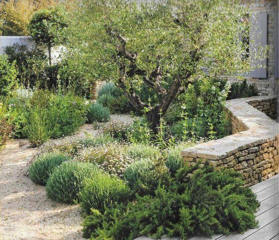 Quelle Inspiration Pour Le Jardin Sec Un Nouveau Jardin